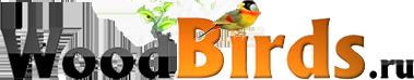 Woodbirds деревянные заготовки для детского творчества